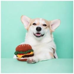 Image d'un chien avec un burger