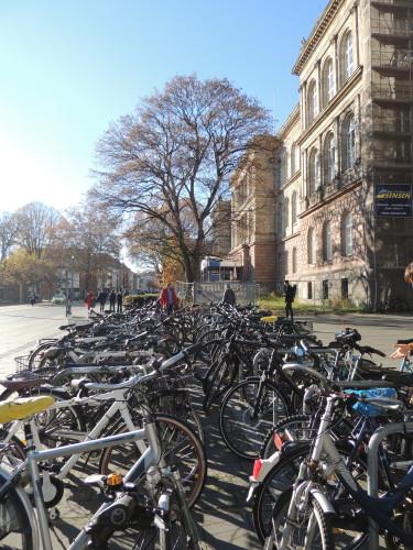 vélos à l'université